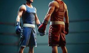 Punchers 300x180 - Punchers