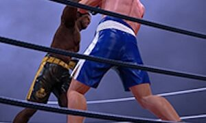 Ultimate Boxing 1 300x180 - Ultimate Boxing